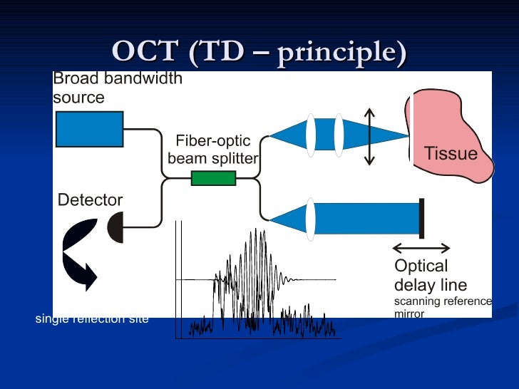 optical coherence tomography technology and applications