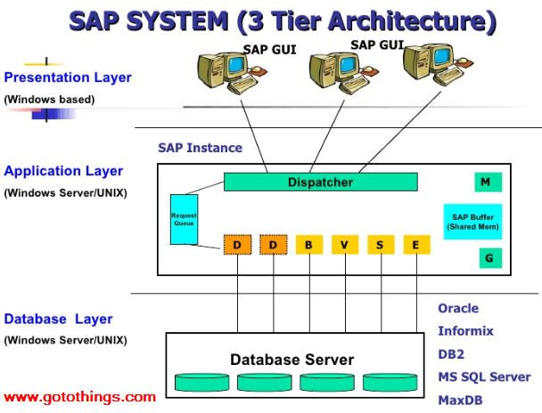 what is sap application software