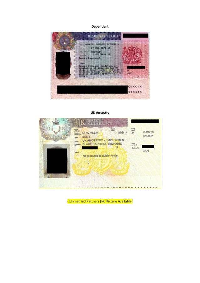 tier 1 dependent visa application form