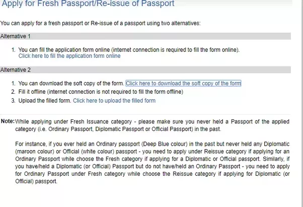 if you make a mistake on a passport application
