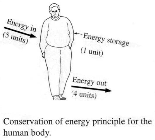 application of second law of thermodynamics in daily life