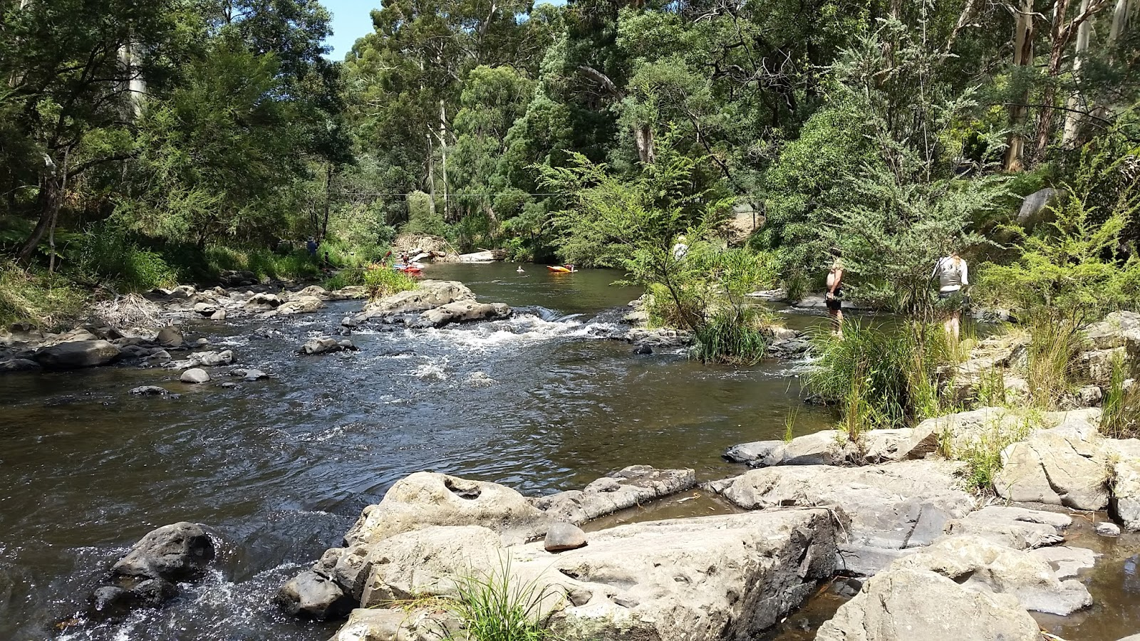 yarra valley water easy access application