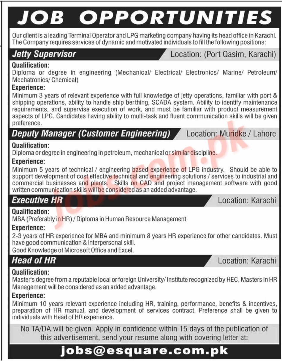 job application for sales manager