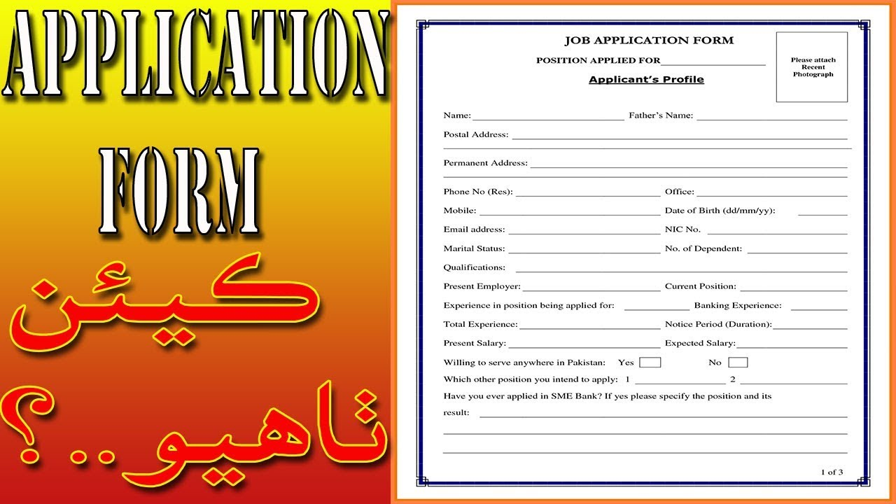 application form example for students