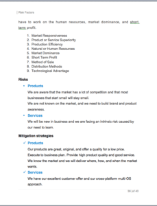 sample business plan for mobile application