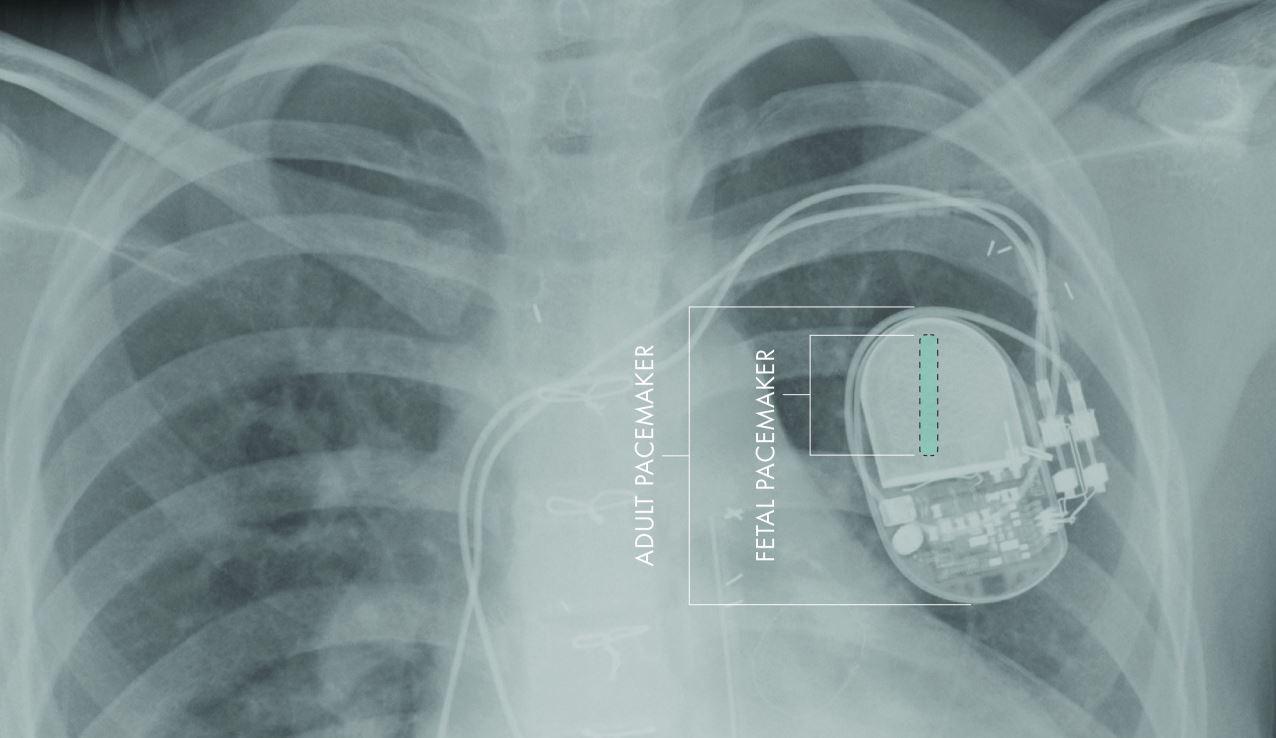 novel applications of nanotechnology in medicine
