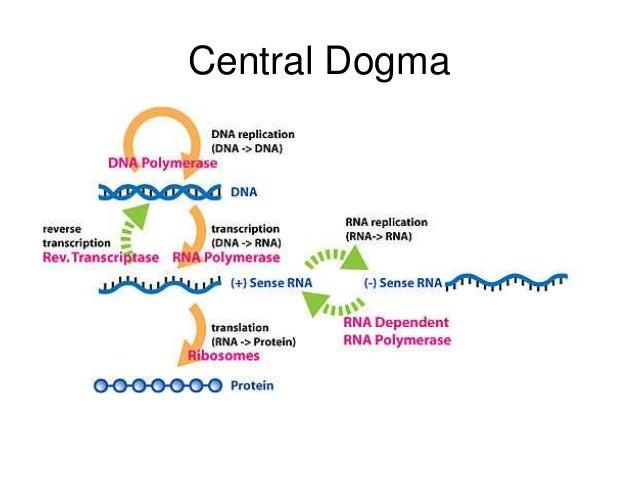 application of molecular biology in medicine