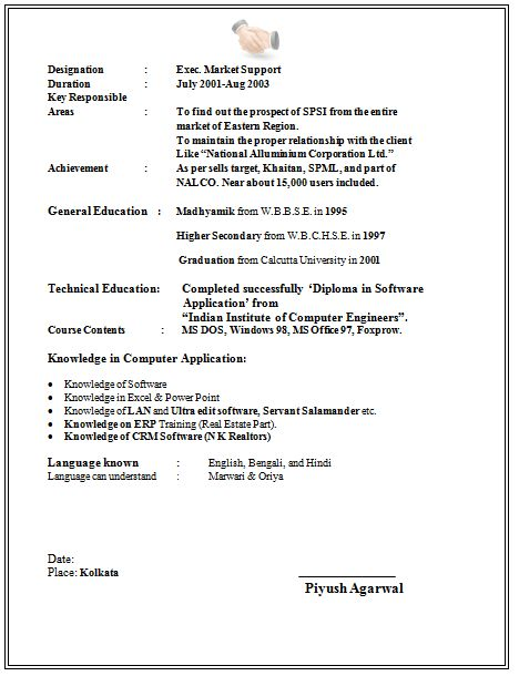 cv format for student visa application