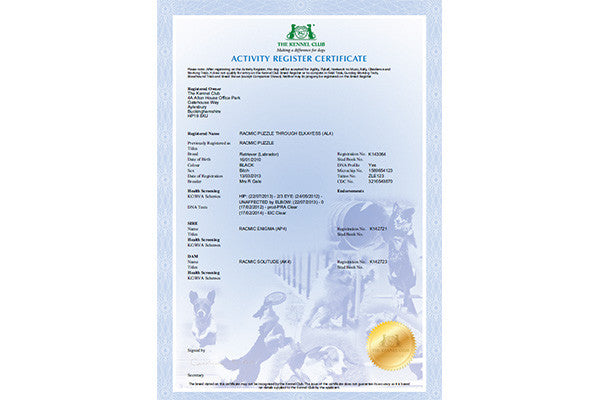 application for the issue of duplicate certificate of registration