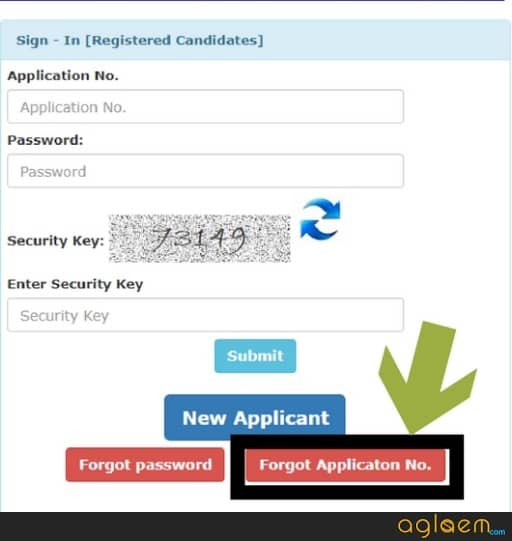 how to retrieve ds 160 application id