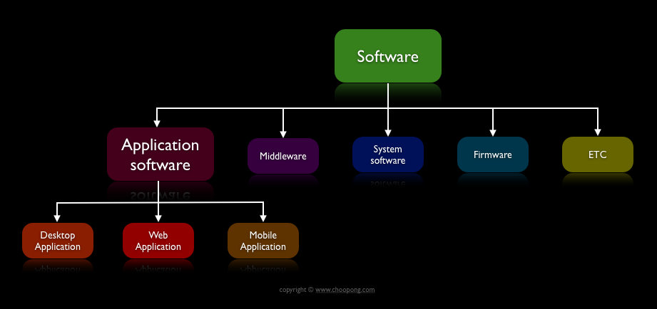 difference between software and application software