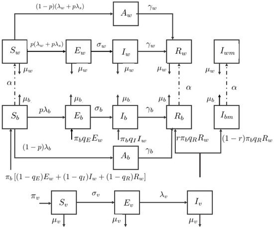 bulletin of mathematical analysis and applications