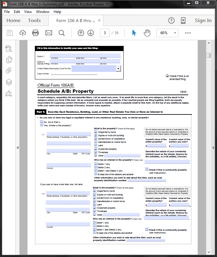 application for summary judgment form
