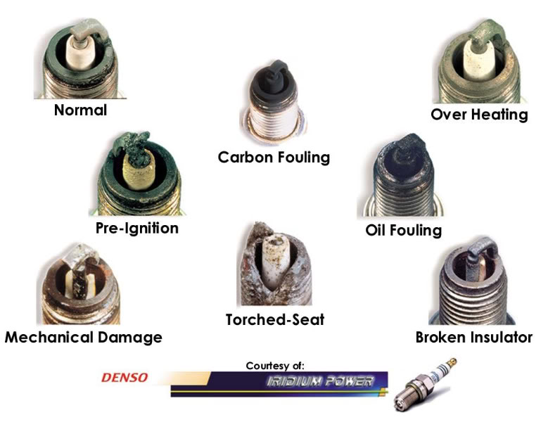 denso spark plugs application chart