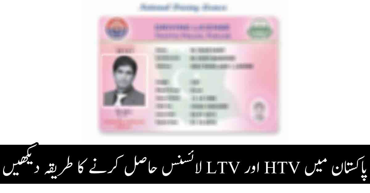 check my driving licence application online