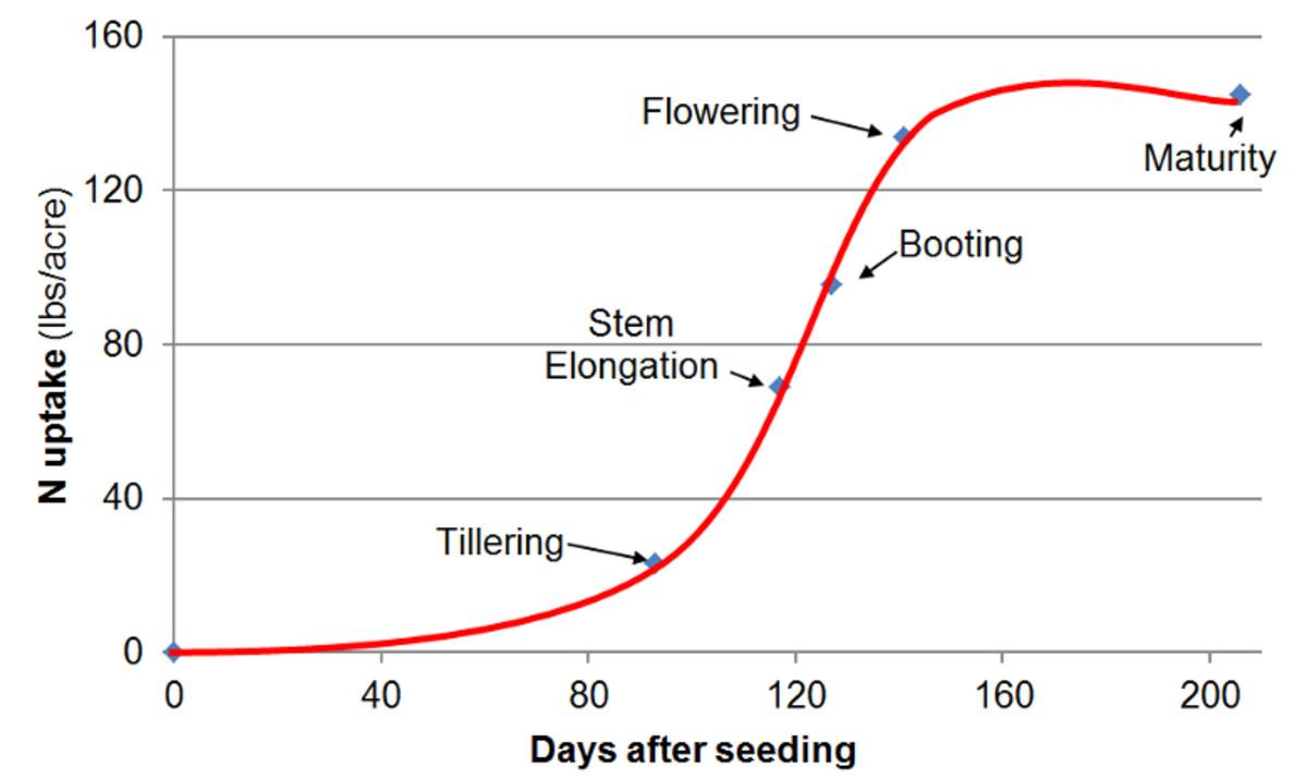fertilizer application rates for corn