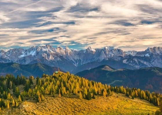 austria schengen visa application form