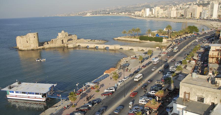 egypt visa application form lebanon