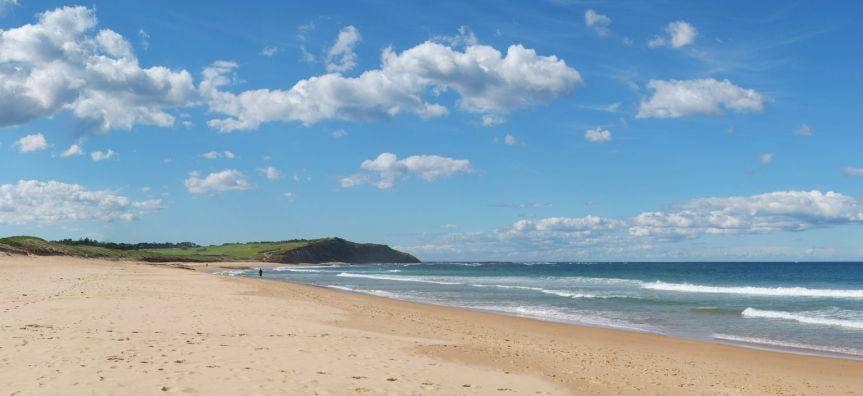 northern beaches council development application form