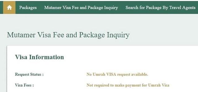 pay visa application fee online