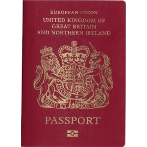 track irish passport application online