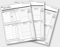 us government citizenship application form